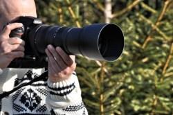 Bilder: Das Objektiv SIGMA 150-500mm F5,0-6,3 DG OS HSM an einer NIKON D700. Bilder © 2012 by Bert Ecke mit NIKON D90 und AF-S DX NIKKOR 18-200 mm 1:3,5-5,6G ED VR Ⅱ.
