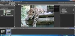 Bild: Die Bildbearbeitungssoftware DxO Optics Pro auf einem iMac.