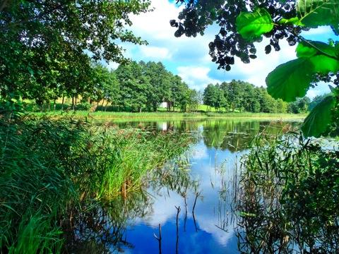 Bild: See in den Masuren - Polen.