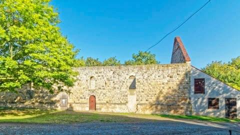 Bild: Ruine auf dem Gelände der Konradsburg bei Ermsleben (Stadt Falkenstein im Harz) im Unterharz. Klicken Sie auf das Bild um es zu vergrößern.