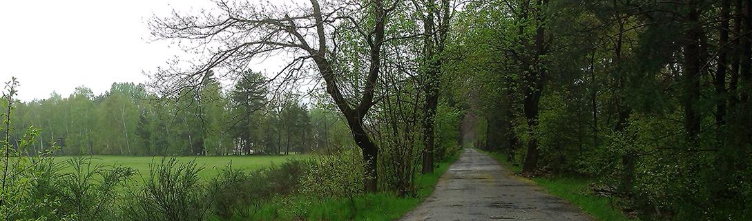Anfahrt zum Birkenhof