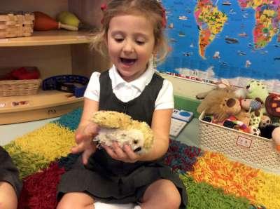 Owl Baby Storytellers!
