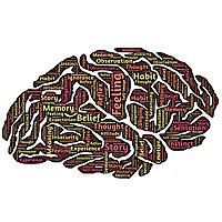 brain-words
