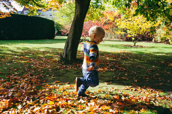 The Maples Day Nursery - with access to Winterbourne House and Garden