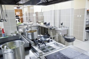 commercial +pest+ control+ in+ birmingham for kitchens