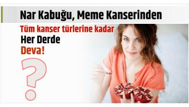 Photo of Nar Kabuğu, Meme Kanserinden tüm kanser türlerine kadar, Her Derde Deva!