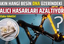Photo of Bakın hangi besin DNA Üzerindeki kalıcı hasarları azaltıyor..