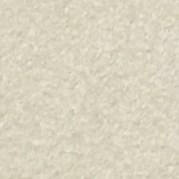 БИРСС Чипс-краска DAMOKLES