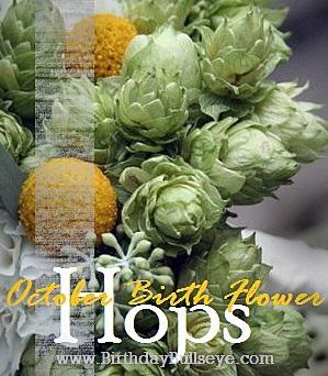 October Birth Flower - Hops
