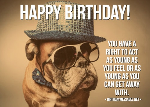 Funny Birthday Wishes Quotes Funny Birthday Messages
