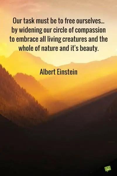 Albert Einsteins Most Inspiring Quotes