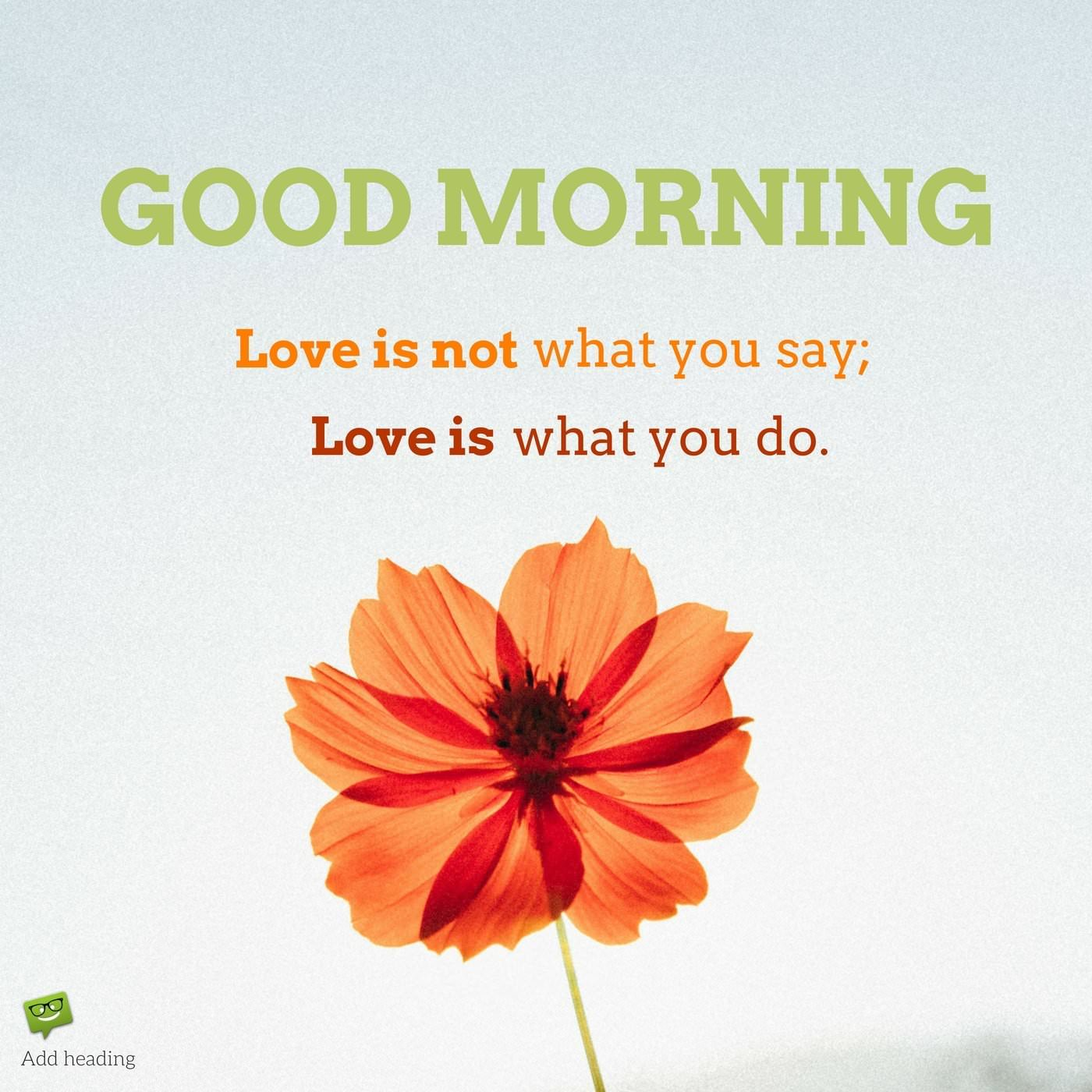 Morning Quotes Love