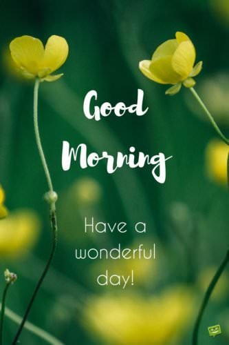 Fresh Inspirational Good Morning Quotes For The Day Get