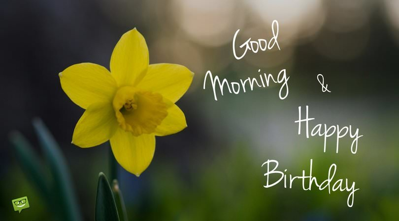 Good Morning And Happy Birthday On Picture With Flower