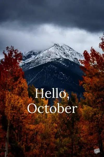 Good Morning October Exploring Autumn In Various Shades