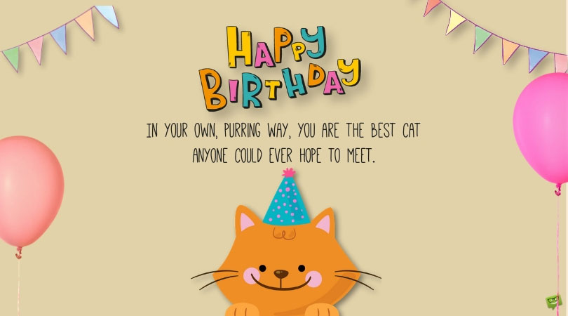 Happy Birthday Kitty Purry Wishes For And With Cats