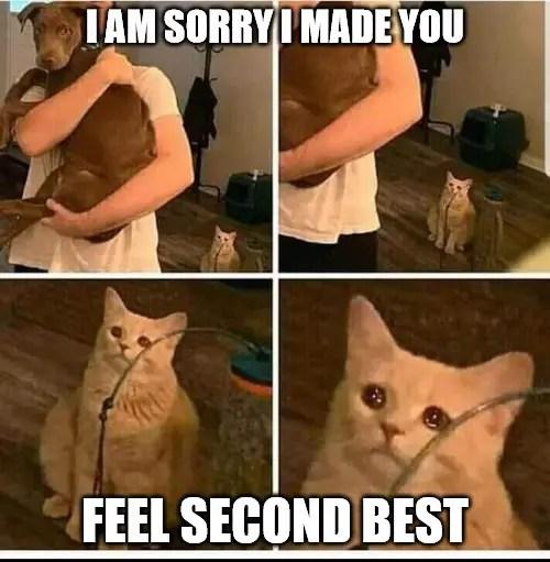 Funny Cat Work Meme Quickmeme