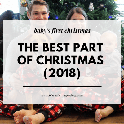The Best Part of Christmas This Year (Baby's First Christmas!)