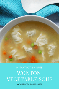 Instant Pot 1 Minute Healthy Wonton Vegetable Soup #instantpot #quickmeal #foodblog #healthyrecipe