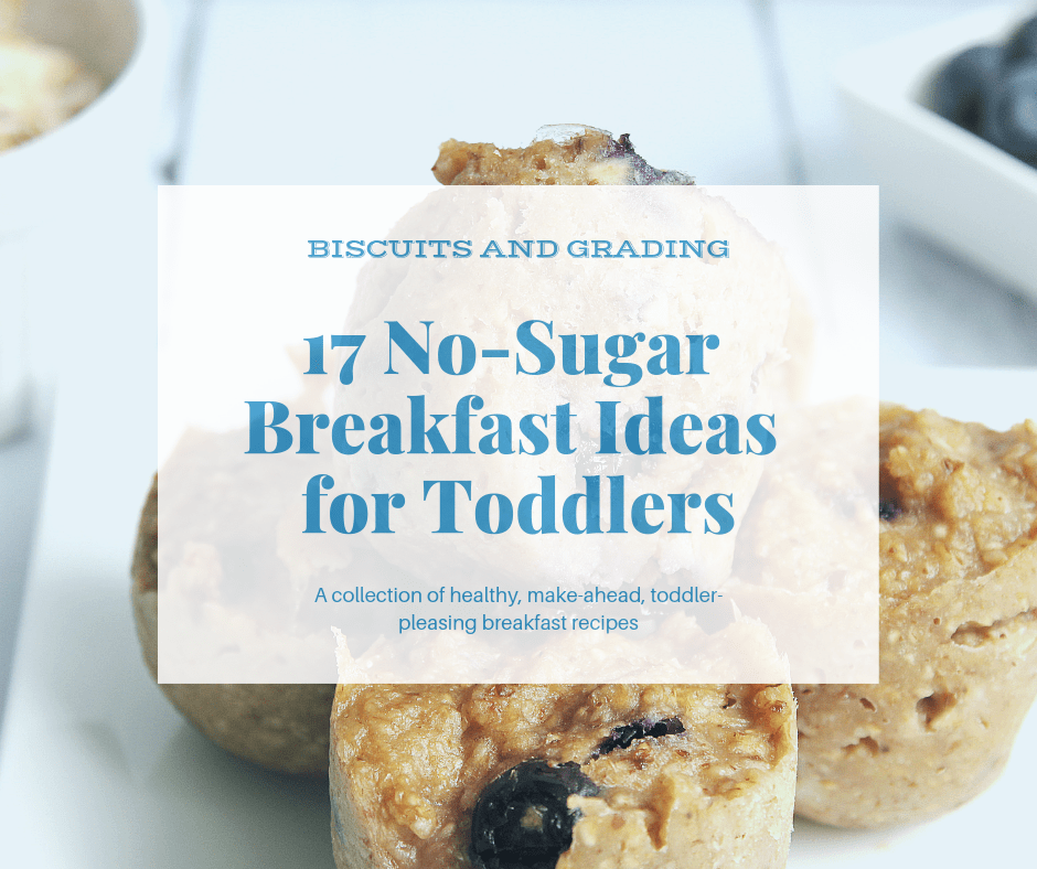 17 No Sugar Breakfast Ideas For Toddlers Biscuits And Grading