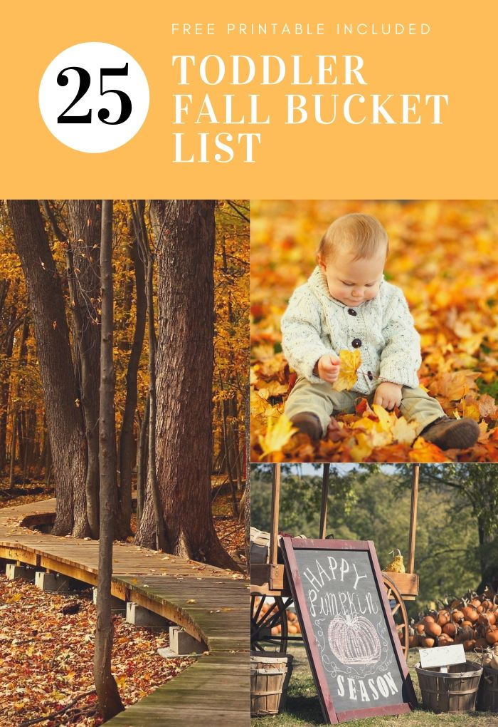 fall toddler bucket list free printable