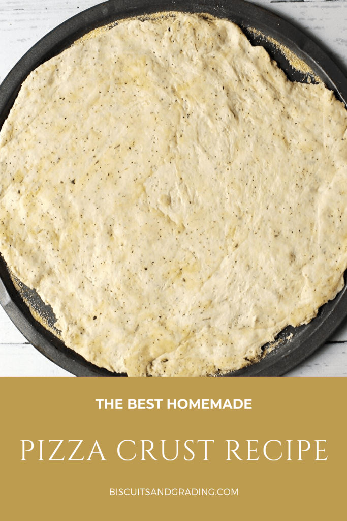 the BEST homemade pizza crust
