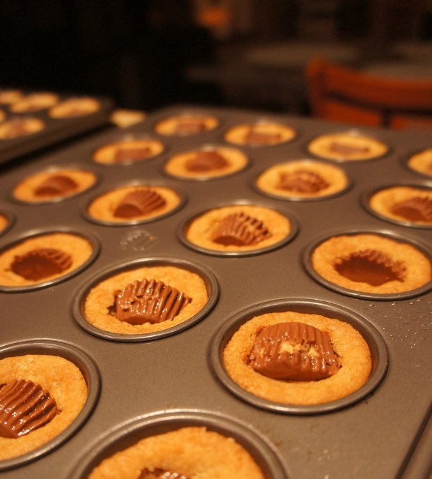 fancy pic of peanut butter things