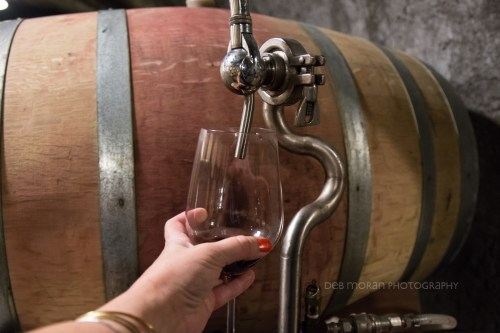 We had the unique opportunity to compare wines directly from the barrel. We drank of the same vines, same grape, harvested 1 week apart. It was amazing how much fruitier the younger wine tasted.