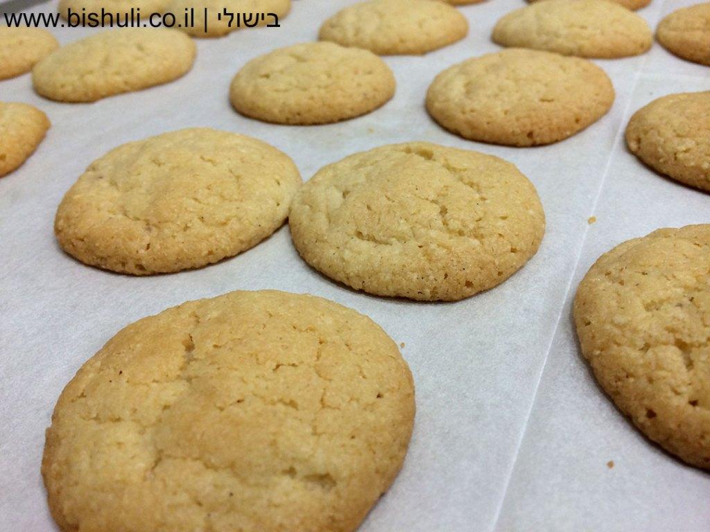 עוגיות שקדים טחונים - לאחר אפייה, מבט מקרוב