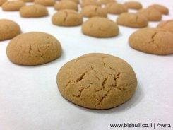 עוגיות לוטוס - לאחר אפייה מבט מקרוב