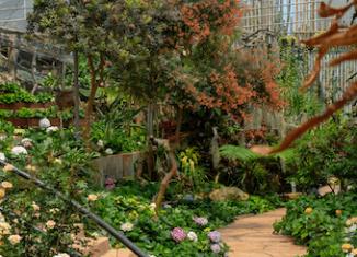inrichting tuin