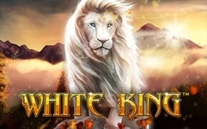 White King Slot - Bitcoin Casino Finder