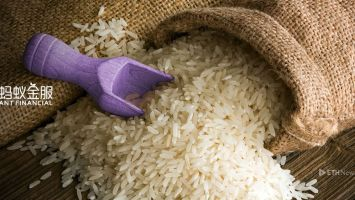 Ant Financial To Launch Blockchain App To Track Rice Quality 2