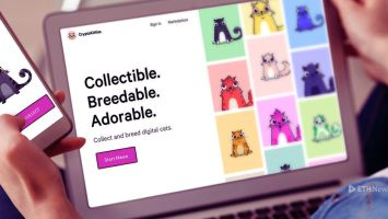 Kitty Supremacy And The Steadfast Collectibles Craze 09 06 2018