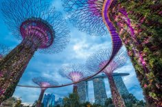 Singapore May Become First Country to Fully Embrace Cryptocurrencies 6