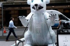 A Bitcoin Rat Is Occupying Wall Street 4