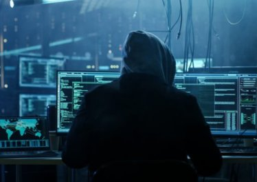 ss cybercrime