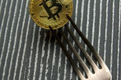 Bitcoin Cash Fork Watch: BCH Infrastructure Providers Reveal Contingency Plans 13