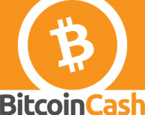 Learn About the BCH Network With Bitcoin.com's Mastering Bitcoin Cash
