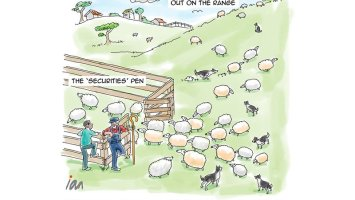 Cartoon: Driving Sheep 2