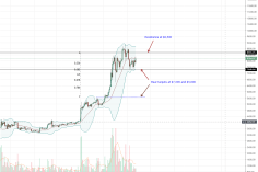 Bitcoin (BTC) Halving In A Year, Is LTC Setting the Pace? 4