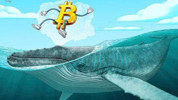 Bitcoin Whale Suggests BTC Price Will Crash — Halving Is Priced in 21