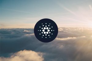 Cardano's [ADA] Price Plummets With Just Two Days Left For Shelley Launch 1