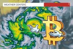 Canadian Weatherman Frankie MacDonald Is Bullish on Bitcoin 1
