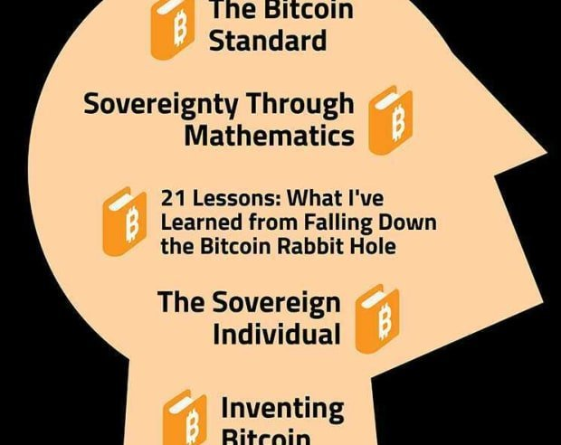 by btc schooling inforgraphic 03