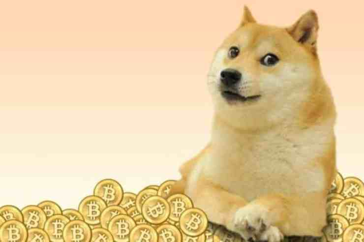 dogecoin doge price on leap as