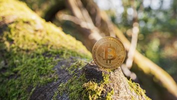 cryptowisser cryptocurrency likely to be more environmentally friendly than traditional banks