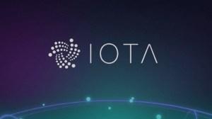 IOTA evaluation and analysis