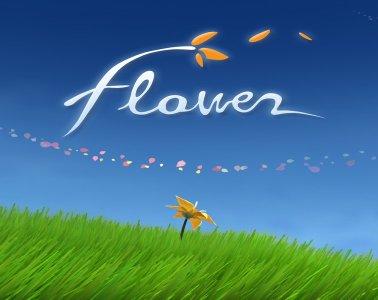 rsz_flower_feature