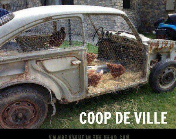 Coop DeVille